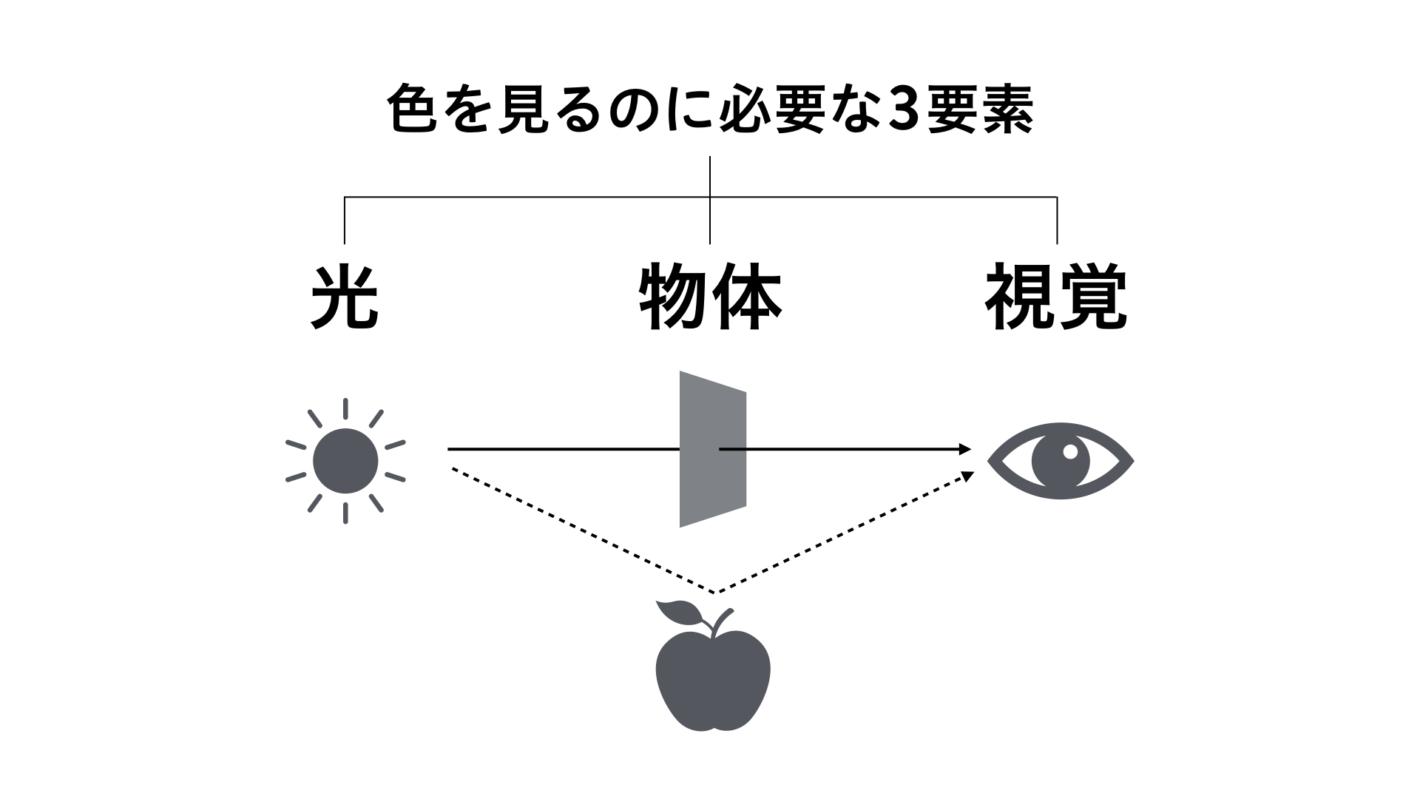 光が物体に反射したり透過したりして目に入ってくる様子を表した図